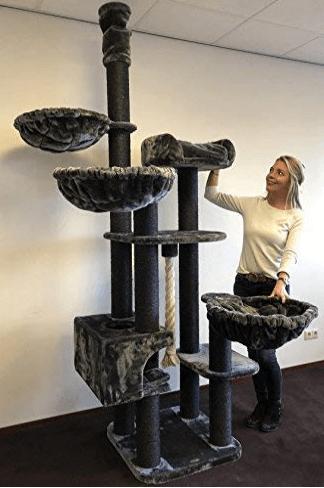 rascador de techo para gatos grandes
