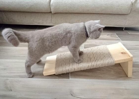 rascador para gatos hecho en casa con cuerda