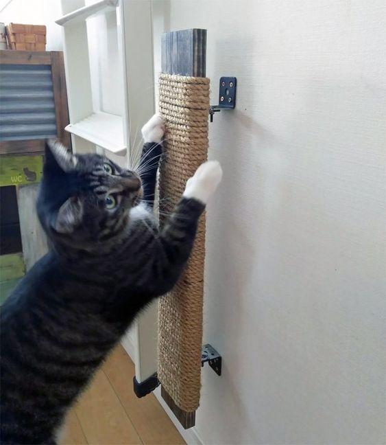 rascador casero de cuerda para gatos